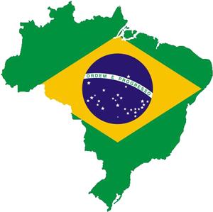 BRASIL-300x306--PNG